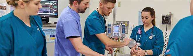 Bachelor of Science in Nursing <span>(BSN)</span></span>